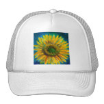 Shimmering Fine Art Sunflower Trucker Hat