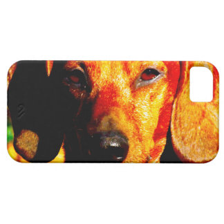 Shimmering Glowing Dachshund Face Closeup iPhone 5 Case