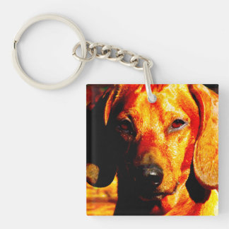 Shimmering Glowing Dachshund Face Closeup Keychain
