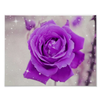 Shimmering Purple Rose Flower Poster