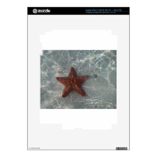 Shimmering Star Fish Decals For iPad 3