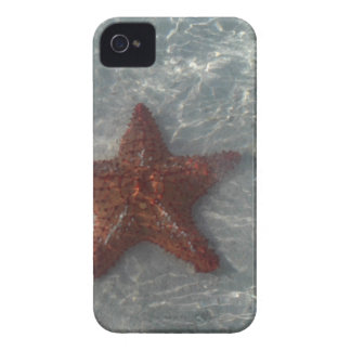 Shimmering Star Fish iPhone 4 Case
