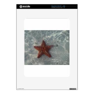 Shimmering Star Fish Skins For iPad