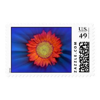 shine bright postage