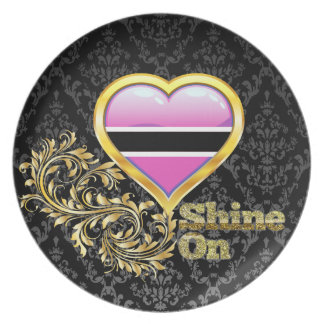 Shine On Botswana Plate