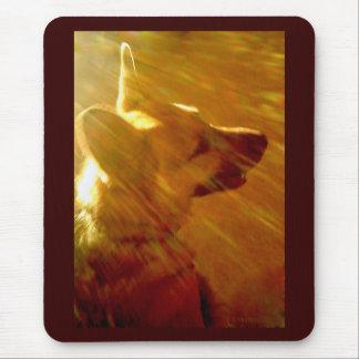 Shine On Me German Shepherd #2 Mouse Pad