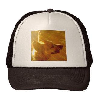 Shine On Me German Shepherd #2 Trucker Hat