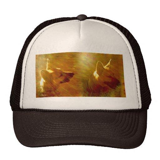 Shine On Me German Shepherd Trucker Hat
