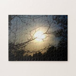 Shine Through Jigsaw Puzzle