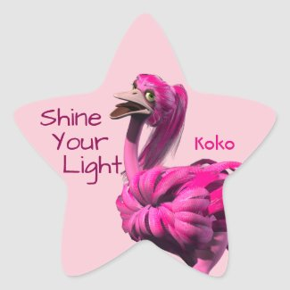 Shine Your Light Stickers