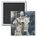 """Shining Armor"" Knight Watercolor Magnets"