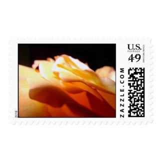 Shining Light Postage Stamp