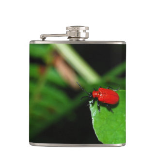 Shining red beetle in the green leaf hip flask