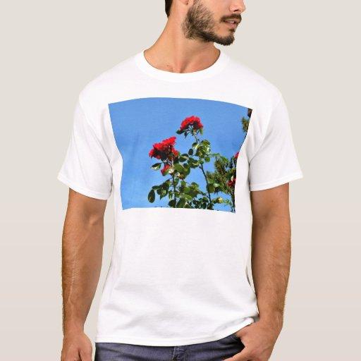 Shining Red Roses T-Shirt