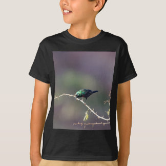 Shining Sunbird (Cinnyris habessinicus) T-Shirt