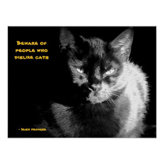 Shiny Black Cat with proverb Poster