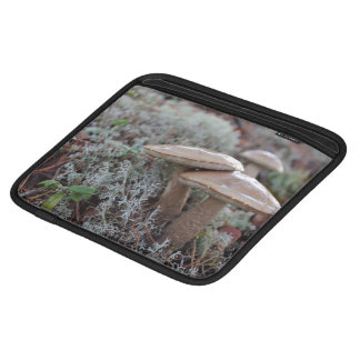 Shiny brown mushrooms grow with other plants iPad sleeves