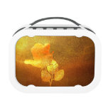 Shiny Gold Ink Paper Romantic Imprinted Rose Lunchbox