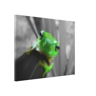 Shiny Green Frog Stretched Canvas Prints