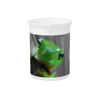 Shiny Green Frog Beverage Pitcher