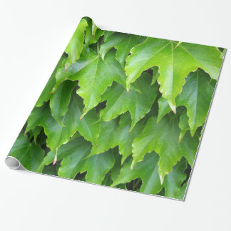 Shiny Green Ivy Leaves Wrapping Paper