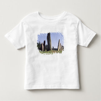 Ship setting toddler t-shirt