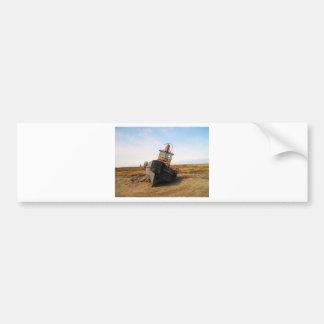 SHIP WRECK in kotz ak Bumper Sticker