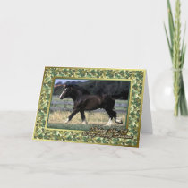 Shire Draft Horse Blank Christmas Card