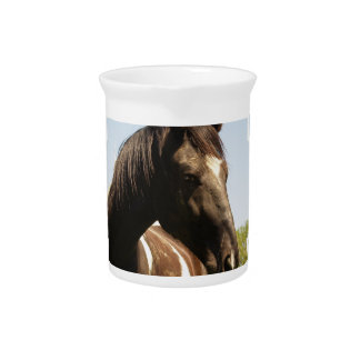 Shire Draft Horse Pitcher