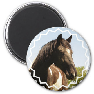 Shire Draft Horse Round Magnet Fridge Magnets