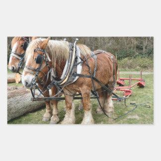 Shire Horses Rectangular Sticker