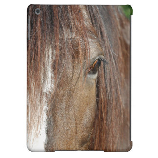 shire iPad air cases
