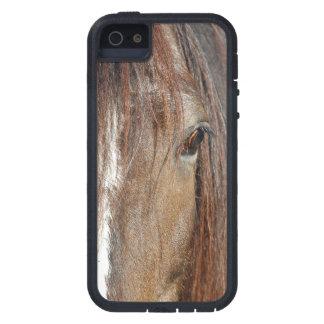 shire iPhone SE/5/5s case