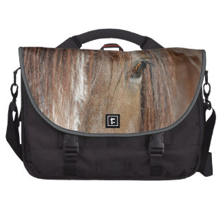 shire bags for laptop