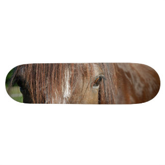 shire skateboard deck
