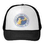 shirt_horizontal_blueyellow.png hats