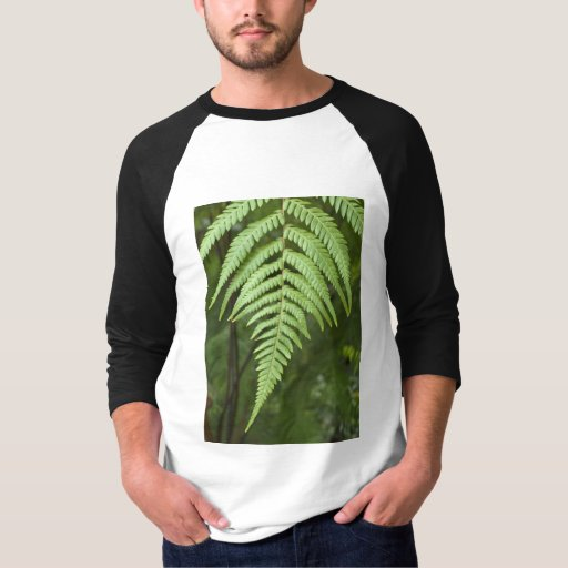 Shirt with Decorative Fern Motif