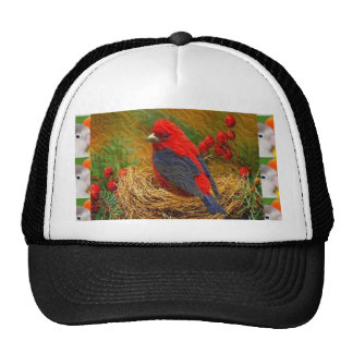 shirts Chicks Birds Wild Tiny Singing Pets 99 Trucker Hat