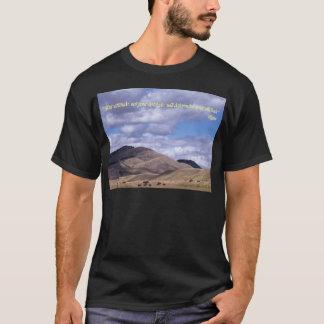 Shirts:  Your attitude, not your aptitude, will de T-Shirt