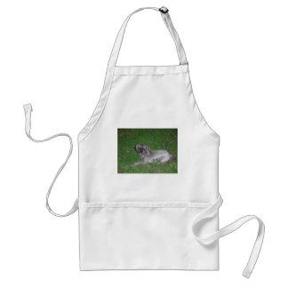 Shitzu, brown,silver adult apron