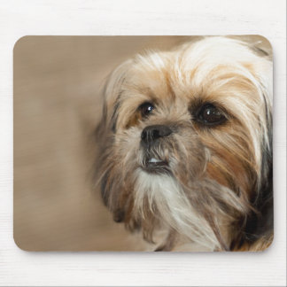 Shitzu Yorkie Terrier Mouse Pad