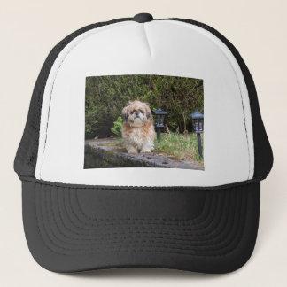 shitzui trucker hat
