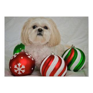 Shiz Tzu with christmas decoration Card