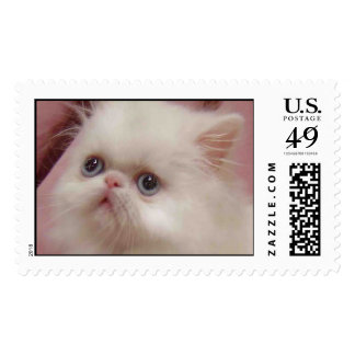 SHO SWEET POSTAGE STAMPS
