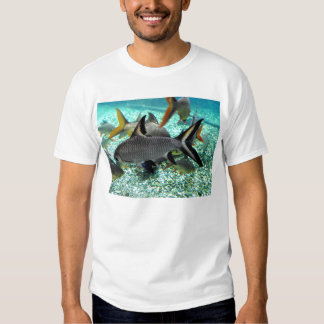 Shoal of fish in springtime, Spain T Shirt