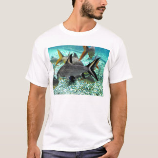 Shoal of fish in springtime, Spain T-Shirt