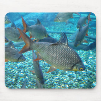 Shoal of fish mouse pad