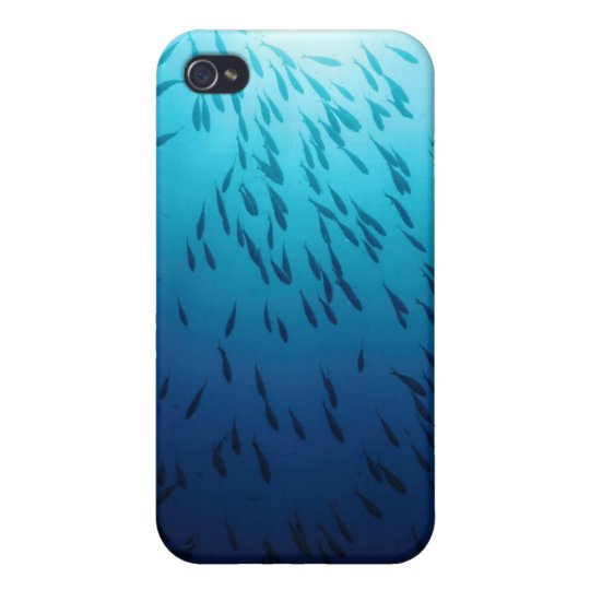 Shoal of fishes cover for iPhone 4
