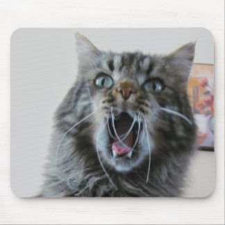 Shocked kitty is shocked mouse pad