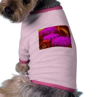 Shocking pink Daisies Pet Tee